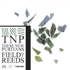 9. These New Puritans - Field of Reeds